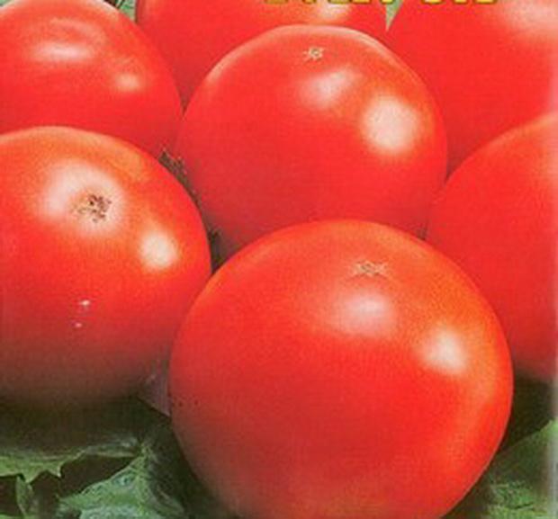 Сорт томата: Кузя   f1