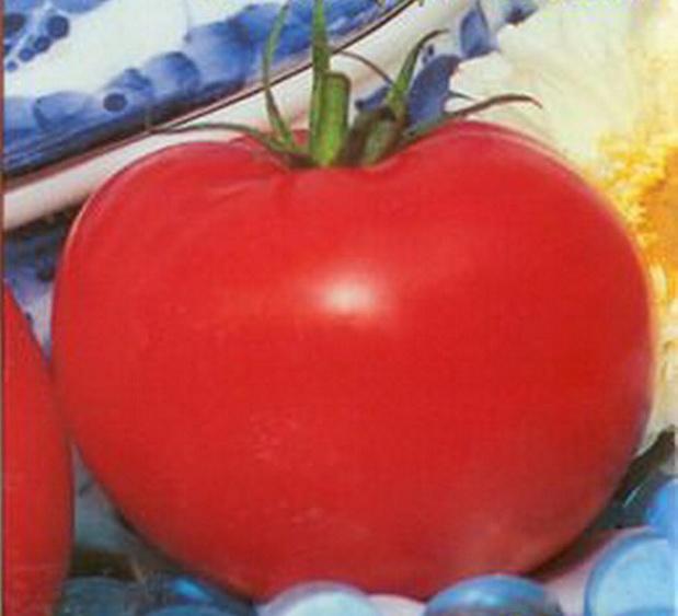 Сорт томата: Ладушка   f1
