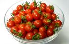 Сорт томата: Лимончик f1