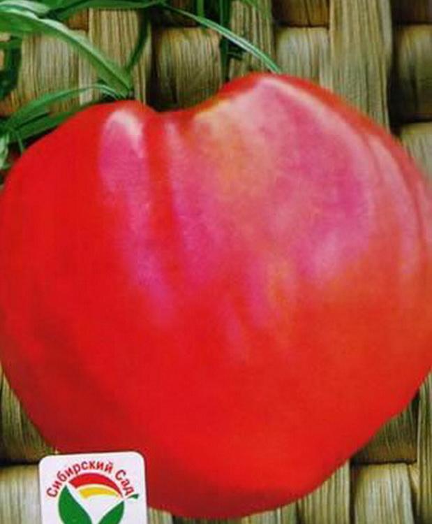 Сорт томата: Любимый праздник