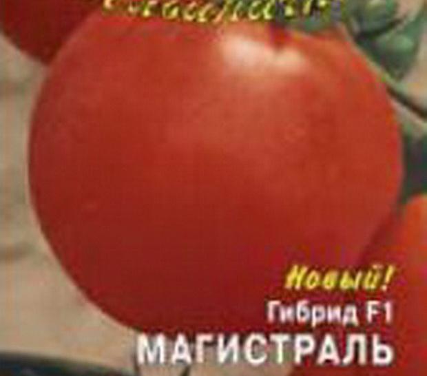 Сорт томата: Магистраль   f1