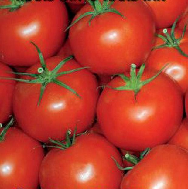 Сорт томата: Мальчик-с-пальчик
