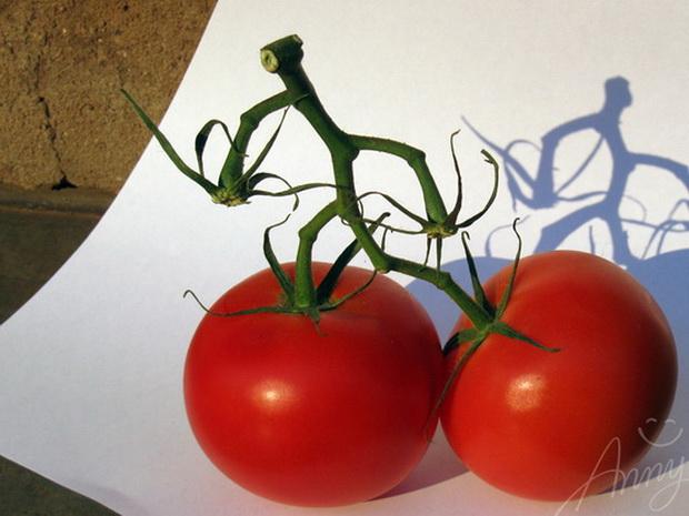 Сорт томата: Маня   f1