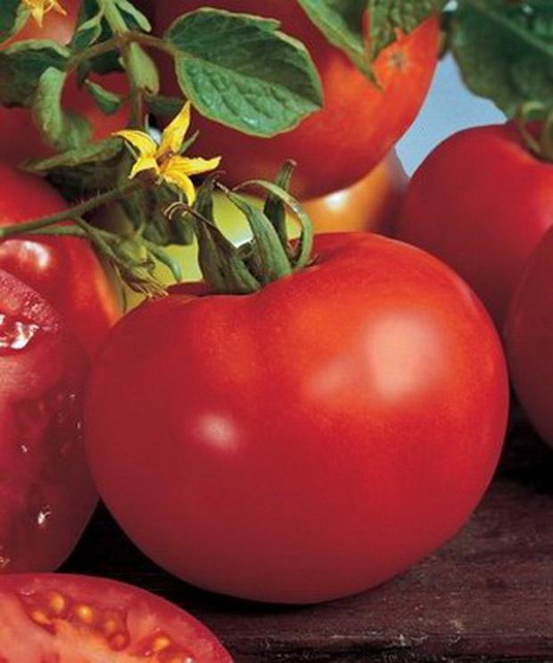 Сорт томата: Марисса   f1