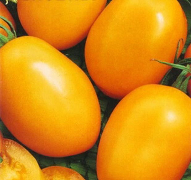 Сорт томата: Медовая конфетка   f1