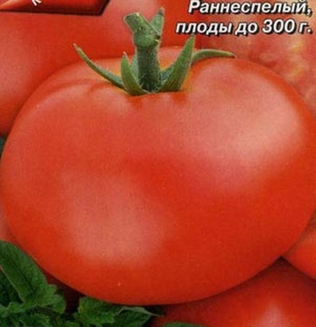 Сорт томата: Метелица