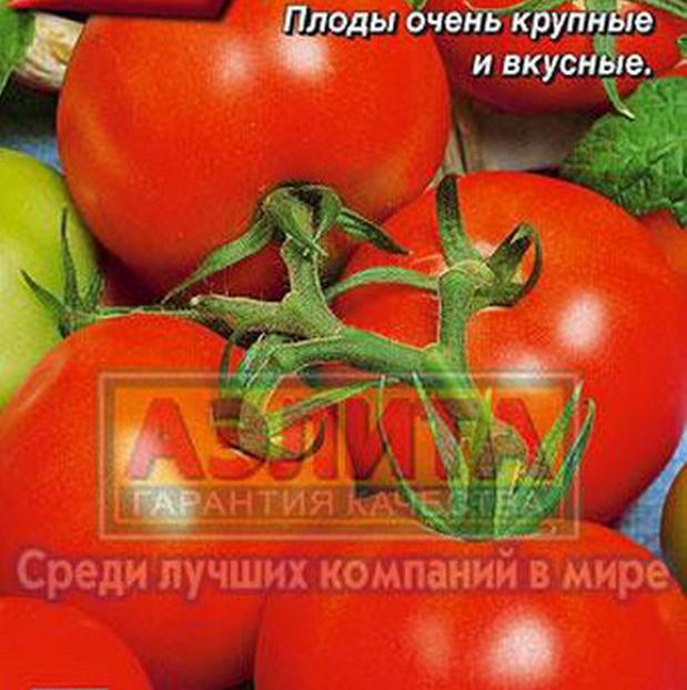 Сорт томата: Минин   f1