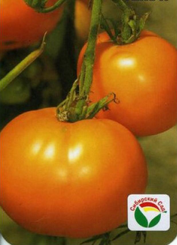 Сорт томата: Монастырская трапеза