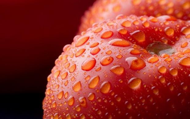 Сорт томата: Монетка