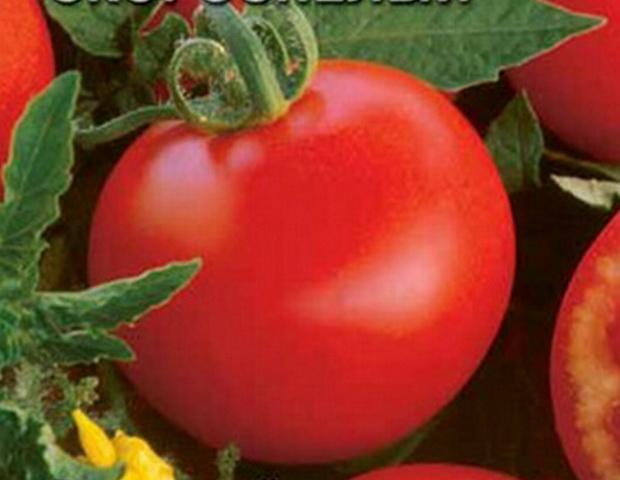 Сорт томата: Московский