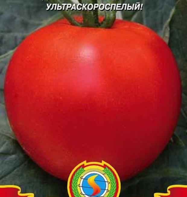Сорт томата: Мулат б   f1