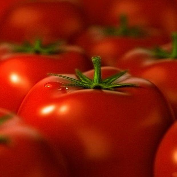 Сорт томата: Находка дачника