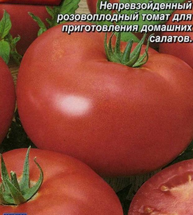 Сорт томата: Настенька