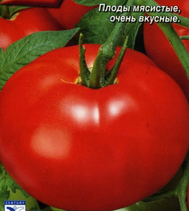 Сорт томата: Настёна   f1