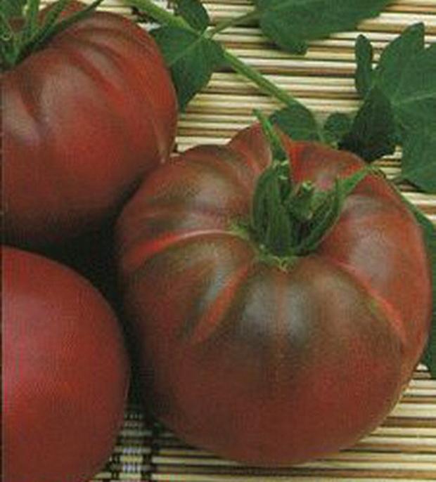 Сорт томата: Негритенок