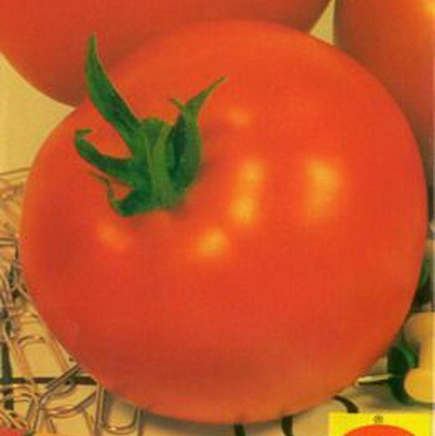 Сорт томата: Нолик   f1