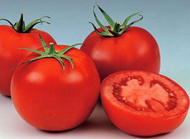 Сорт томата: Ньютон   f1