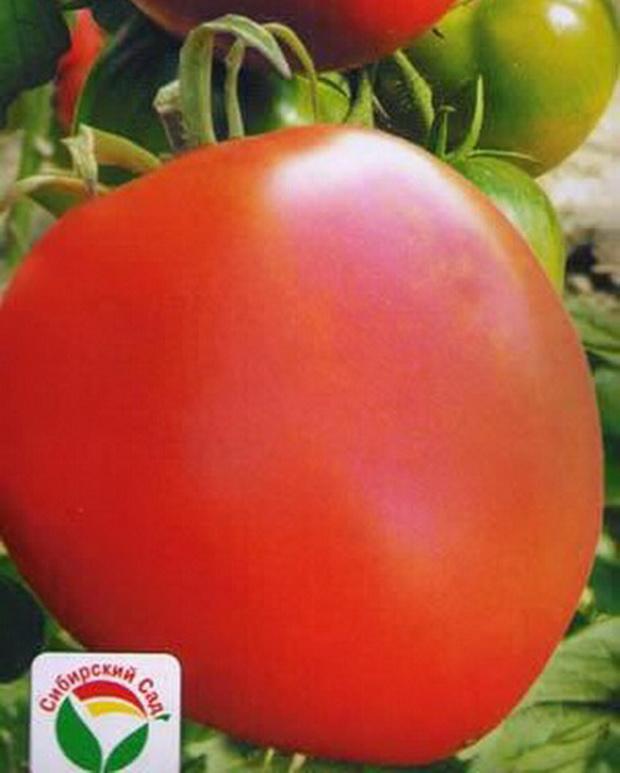 Сорт томата: О-ля-ля