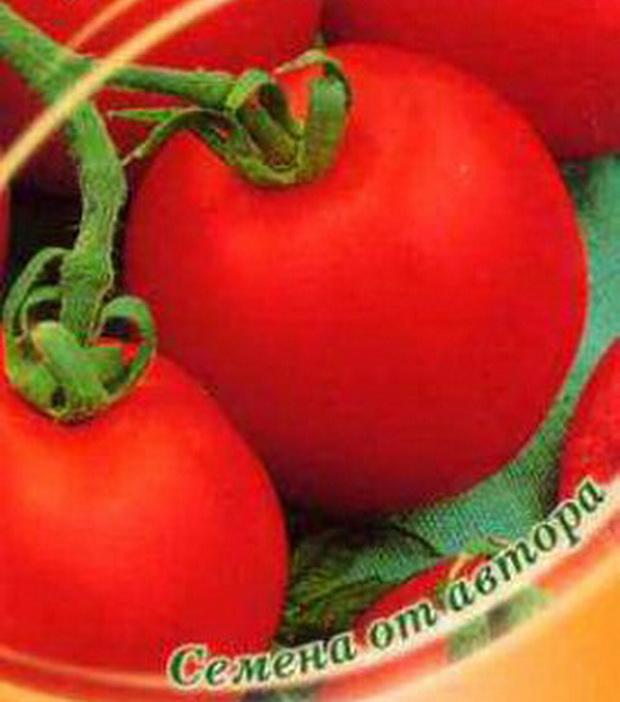 Сорт томата: Опера   f1