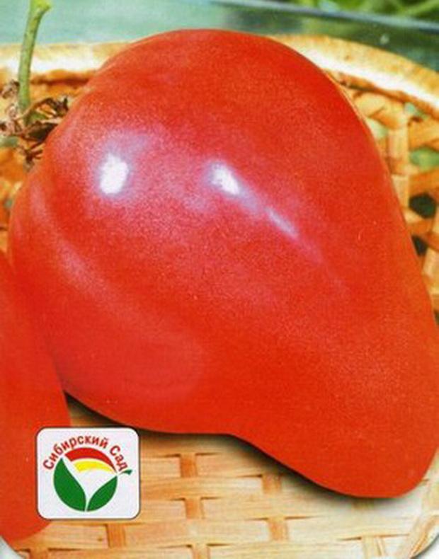 Сорт томата: Орлиный клюв