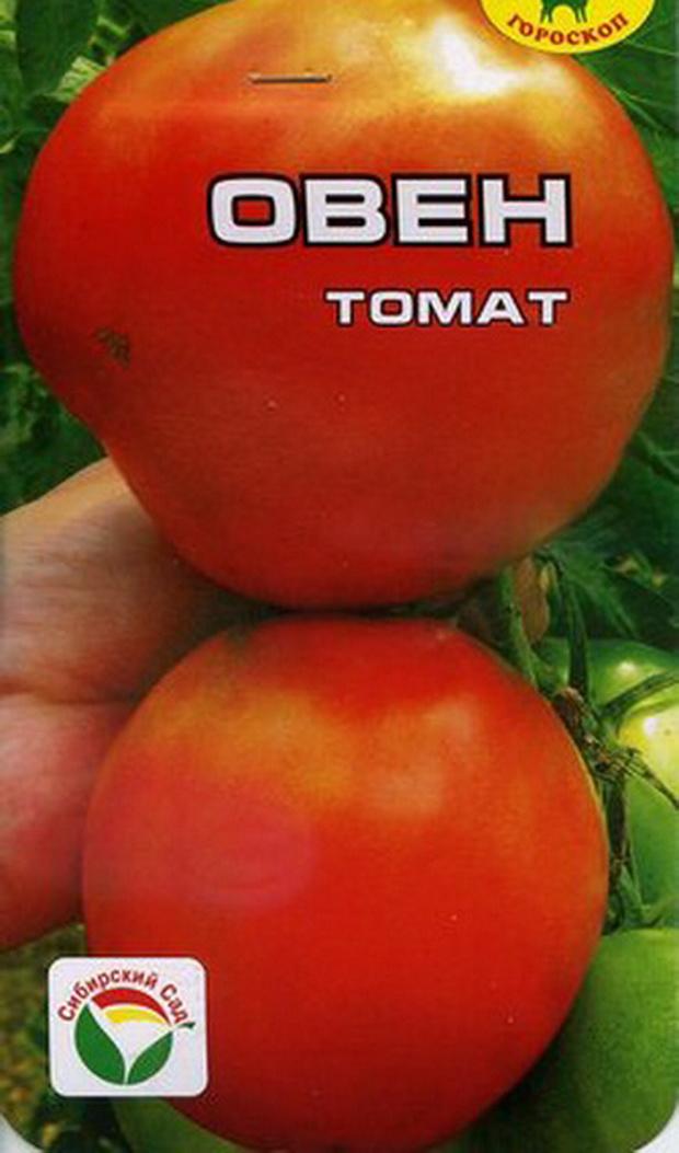 Сорт томата: Овен