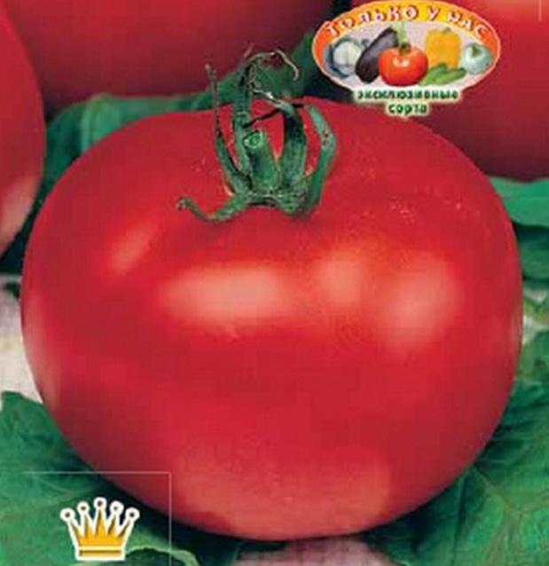 Сорт томата: Пампушка   f1