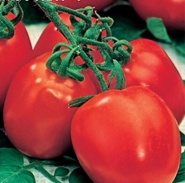 Сорт томата: Петр первый   f1