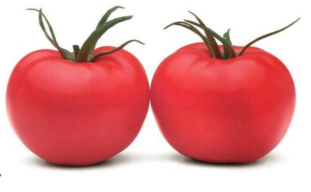 Сорт томата: Пинк парадайз   f1