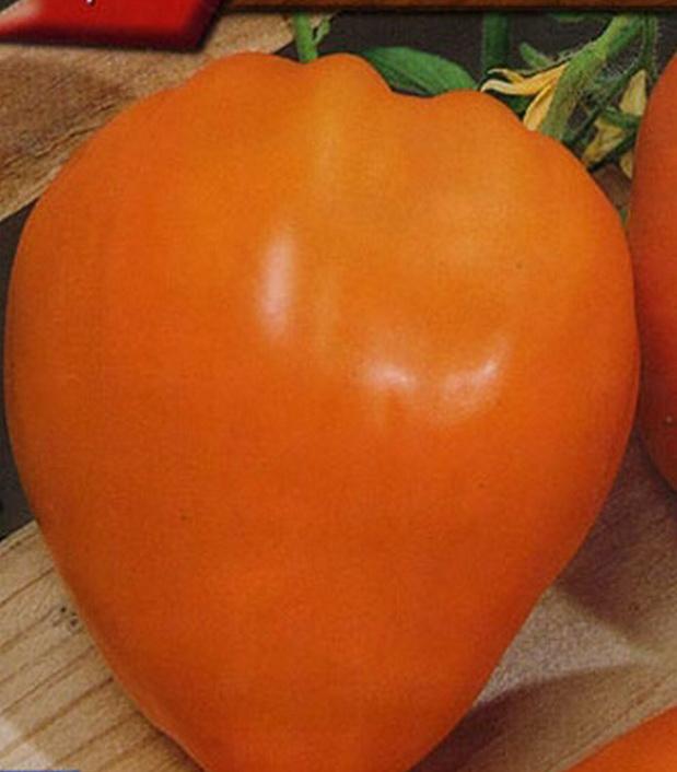 Сорт томата: Подарок феи