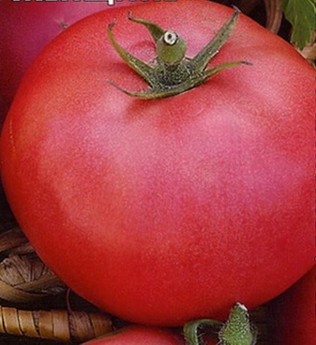 Сорт томата: Подарок женщине   f1