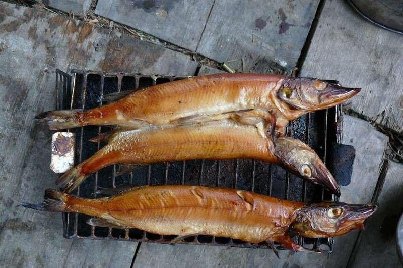 Полугорячее копчение рыбы