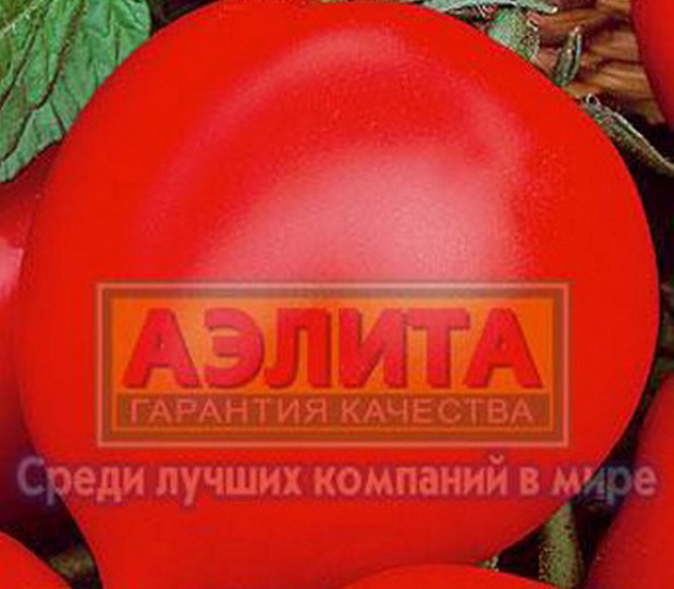 Сорт томата: Пожарский   f1