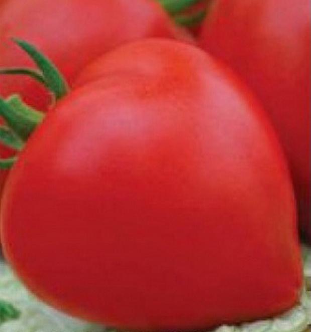 Сорт томата: Премиум   f1