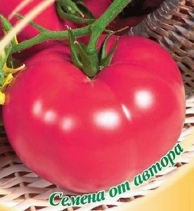 Сорт томата: Пятница   f1