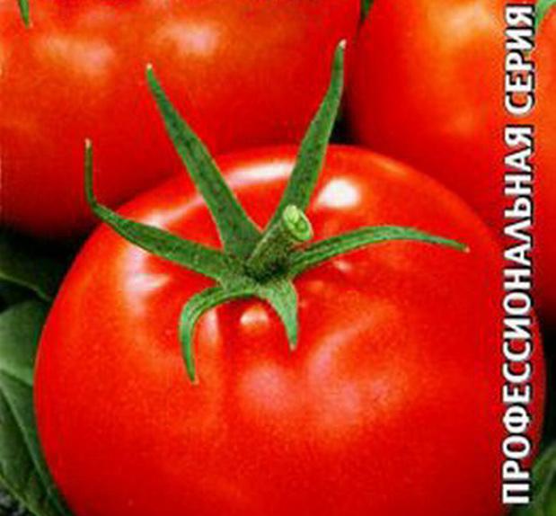 Сорт томата: Пышная купчишка   f1