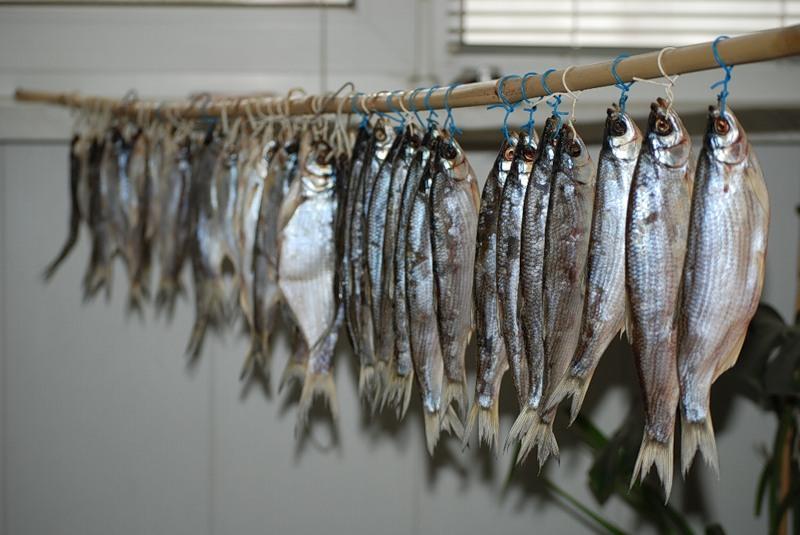 Рыбец, засоленный с пряностями