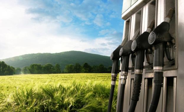 Смогут ли растения обеспечить человечество энергией