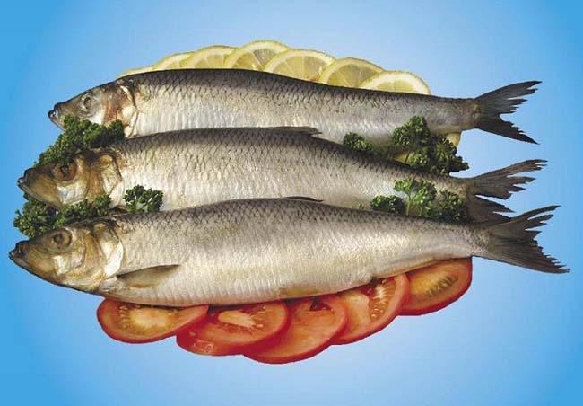 Специальный посол свежей рыбы