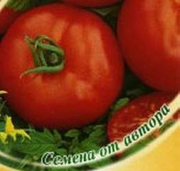 Сорт томата: Виртуоз   f1