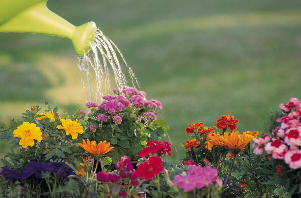 Вода и влажность воздуха