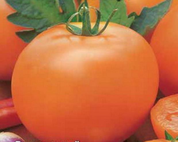 Сорт томата: Жар птица   f1