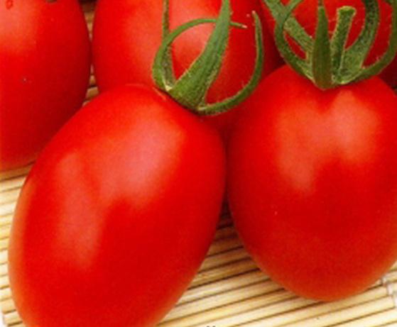 Сорт томата: Железная леди   f1