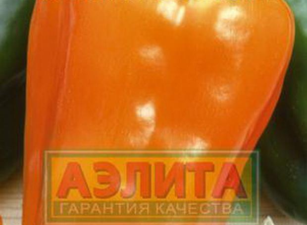 Сорт перца сладкого: Аэлита