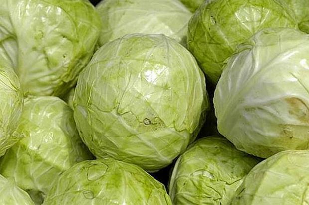 Сорт капусты белокочанной: Анкома рз   f1