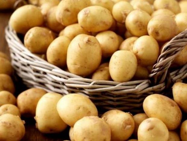 Сорт картофеля: Антонина