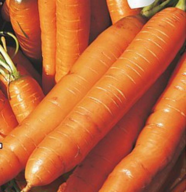 Сорт моркови: Арбулак   f1
