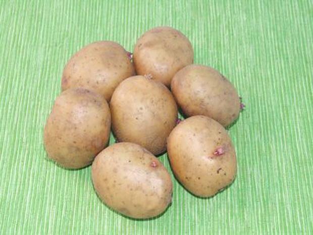 Сорт картофеля: Аврора