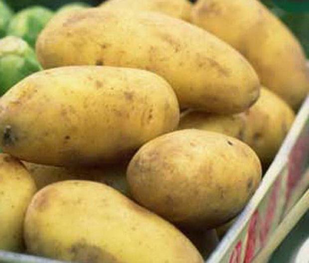 Сорт картофеля: Айл оф джура