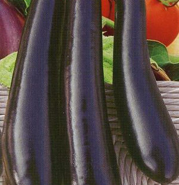 Сорт баклажана: Банан