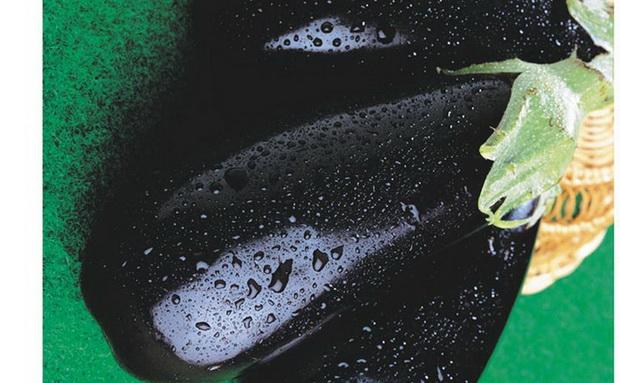 Сорт баклажана: Черный красавец